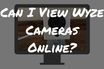 Can I View Wyze Cameras Online?